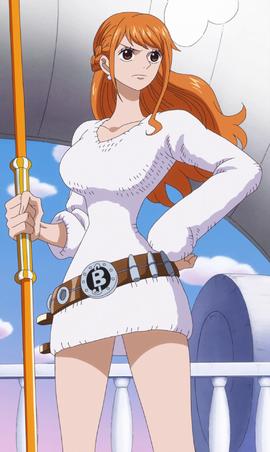 Qui Es-Tu Dans One Piece ? Test De Personnalité 14