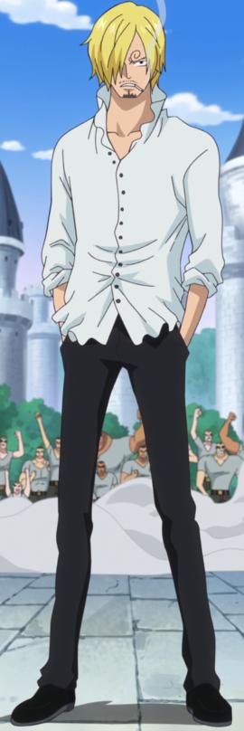 Qui Es-Tu Dans One Piece ? Test De Personnalité 13
