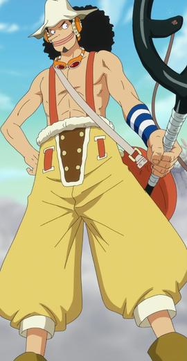Qui Es-Tu Dans One Piece ? Test De Personnalité 16