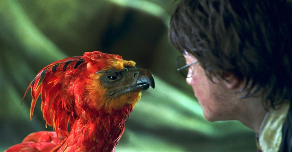 Quiz Harry Potter Films : Vas-Tu Réussir À Identifier De Quel Film Proviennent Ces 40 Scènes Harry Potter ? 15