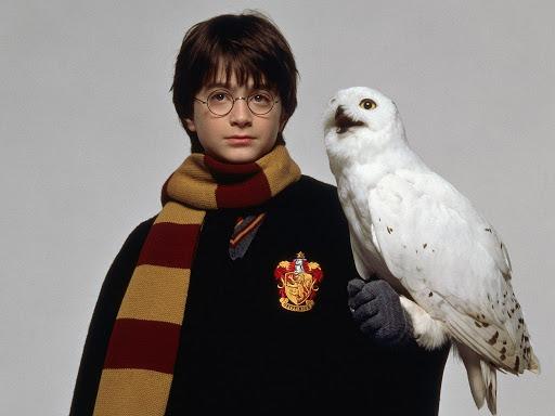 Test Harry Potter : Quel Est Ton Animagus ? 13